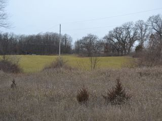 58 +/- Acres at the corner of Schafer and Pingree Rd, Livingston Co