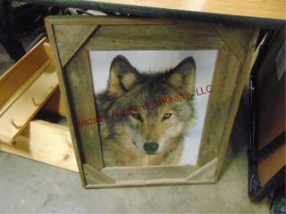 Wolf pic  23 x 27    3 wood shelves 23  long
