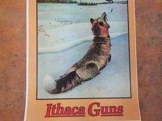 ADVERTISING POSTER FOR ITHACA GUNS   1904