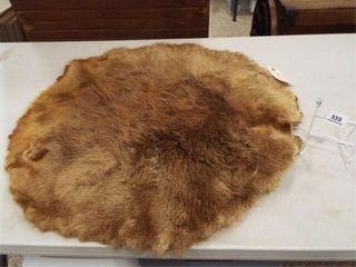 Beaver Pelt  28