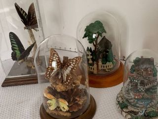 Glass dome Decor butterflies and houses