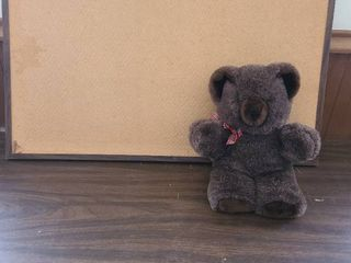 Bulletin board 2 x 3 feet and a teddy bear