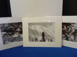 Set of 3 Black   White Photographs
