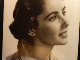 Young   lovely Photo of Elizabeth Taylor