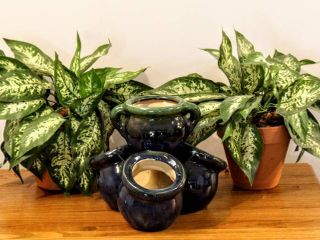 2  Faux House Plants in Terra Cotta Pots    1  Blue   Green Ceramic Planting Pots