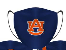 3 layer Face Mask Auburn
