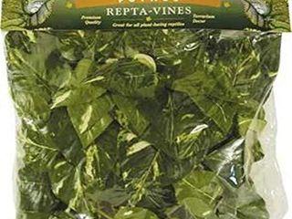 Fluker s Repta Vines Pothos for Reptiles and Amphibians