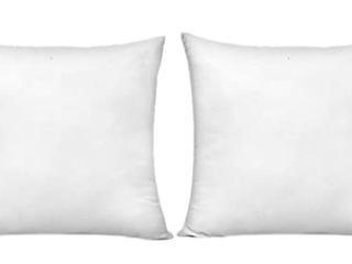 Hippih 20x20 INCH Pillow Insert Set Of 2