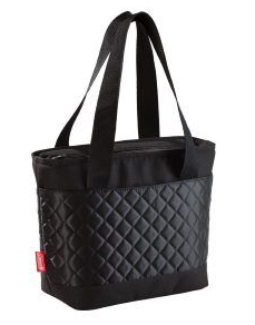 Coleman Insulated lunch Bag
