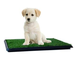 Indoor Fake Grass Pee Pad   Retail   15 00
