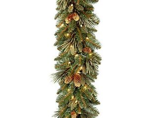 National Tree Carolina Pine Garland with Clear lights  9 Feet
