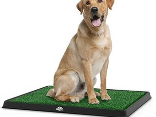 Artificial Grass Puppy Pad for Dogs and Small Pets   Portable Training Pad with Tray   Dog Housebreaking Supplies by PETMAKER