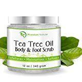 Tea Tree Oil Body Scrub   12 Oz 100  Natural Body   Foot Scrub