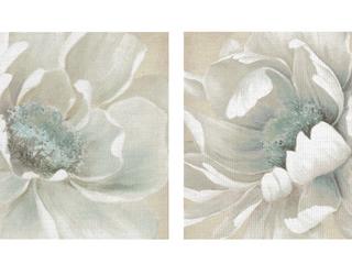 Winter Blooms I   II by Carol Robinson Canvas Art