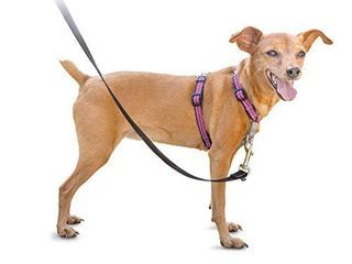 PetSafe 3in1 Harness  from The Makers of The Easy Walk Harness  Fully Adjustable No Pull Dog Harness Plum Extra Small