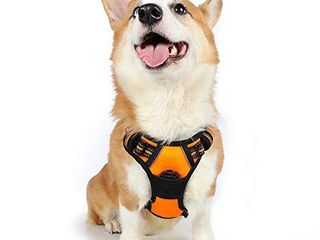 rabbitgoo Dog Harness No Pull Pet Harness with 2 leash Clips Adjustable Soft Padded Dog Vest Reflective No Choke Pet Oxford Vest with Easy Control Handle for Medium Dogs Orange  M  Chest 19 1 29 3