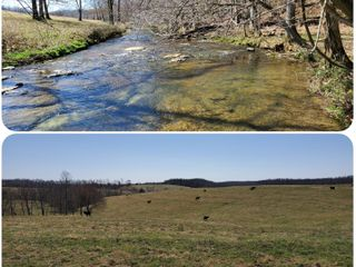 369 Acres+/- As 1 Tract -