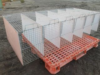 ROW OF 6 CAGES