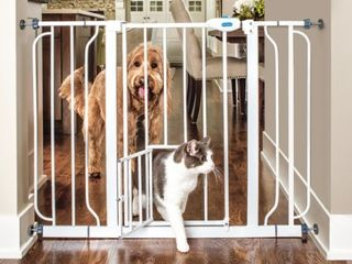 Carlson Pet Products Extra Wide Walk Through Gate