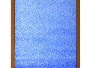 16x20x1 Air Filter  Set of 12