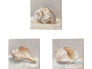 Ethan Harper  Impressionist Shell Study  Canvas Art  Set of 3  Retail 93 49