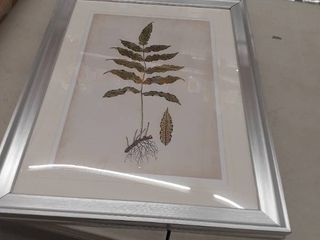 Fern Picture 24 x18 5  Frame is DAMAGED
