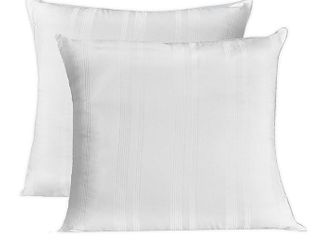 Salt 2 pack Euro Pillows 28  X 28  Throw Pillow Insert Form  2 Pack