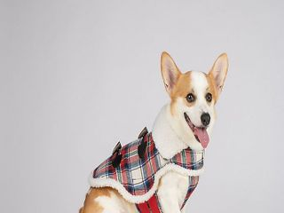 Bee   Willow Home Plaid Sherpa large Dog coat in Red
