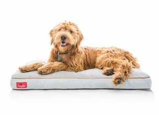 Brindle Soft Memory Foam Dog Bed with Removable Washable Cover  40x26