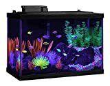 Tetra Aquarium Kit  20 gallon  Glo Fish