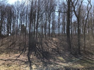 30 Acres of Union County Farm & Wood Land