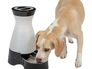 PetSafe Healthy Pet Water Station  Dog and Cat Water System with Stainless Steel Bowl  Medium  128 Oz