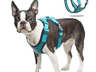 ACKERPET Soft Dog Vest Harness No Pull Small Pet Vest Harnesses with Mesh Padded Reflective Adjustable Pet Vest Easy Control Step in Pet Harnesse or Puppy Small Medium Dogs  S Turquoise