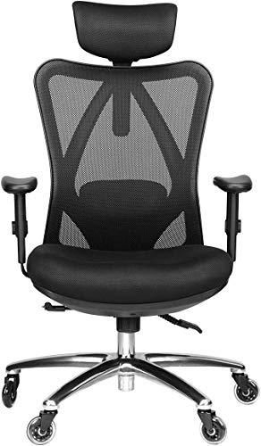 Duramont Ergonomic Adjustable Office Chair with lumbar Support and Rollerblade Wheels