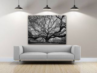 36 x 24  Tree of Wisdom Photography Canvas Art  Retail 124 49