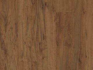 Pergo Outlast  Waterproof Applewood 10 mm T x 5 23 in  W x 47 24 in  l laminate Flooring  13 74 sq  ft    case  Medium