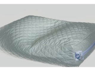Premium Buckwheat Hull Standard Pillow with Quilted Cotton Shell   Natural