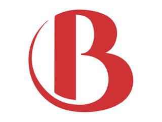 Burmeister Literature Online Only