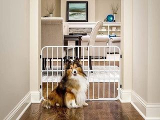 CARlSON 0624 DS EXPANDABlE PET GATE APPROX
