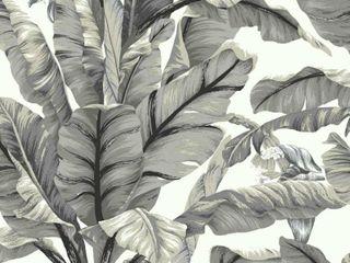 York Wallcoverings Banana leaf White Black Premium Peel and Stick Wallpaper Roll  Covers 45 sq  ft