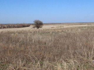 5/4 Auction 160� Acres Cropland