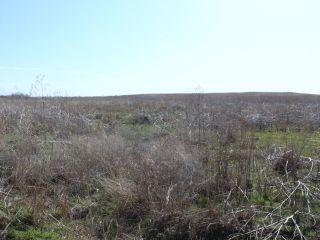 5/4 Auction 160� Acres Cropland
