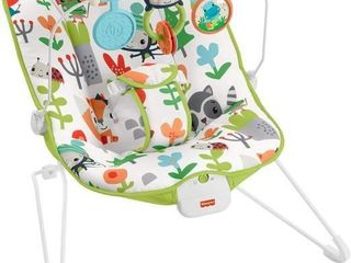 Fisher Price Baby s Bouncer