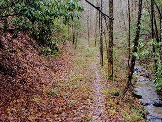 The Sam Wesley Patterson Estate: 95 Acre Smoky Mountain Farm
