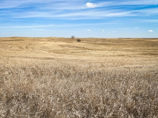 320.73 +/- Acres - Kidder County, ND