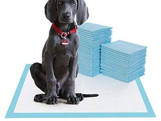 BESTlE large Pet Training and Puppy Pads Pee Pad for Dogs 24 x24 80 Count Super Absorbent   leak Proof