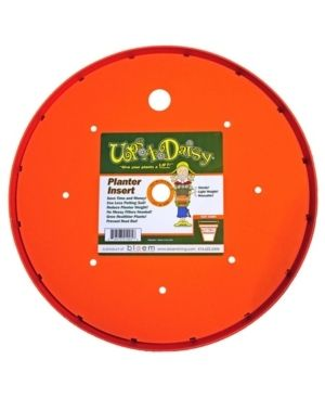 14  Ups A Daisy Planter Insert   Orange   Bloem