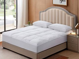 Queen  Triple Chamber Down and Feather Mattress Topper   White  Retail 146 49