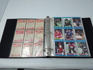 Set Of Opechee 89 90 Hockey