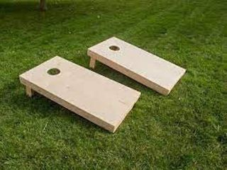 WIlD SPORT CORNHOlE BEAN BAG TOSS GAME  2 X 4